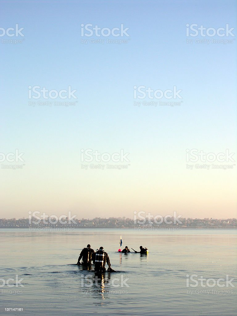 Try To Dive royalty-free stock photo