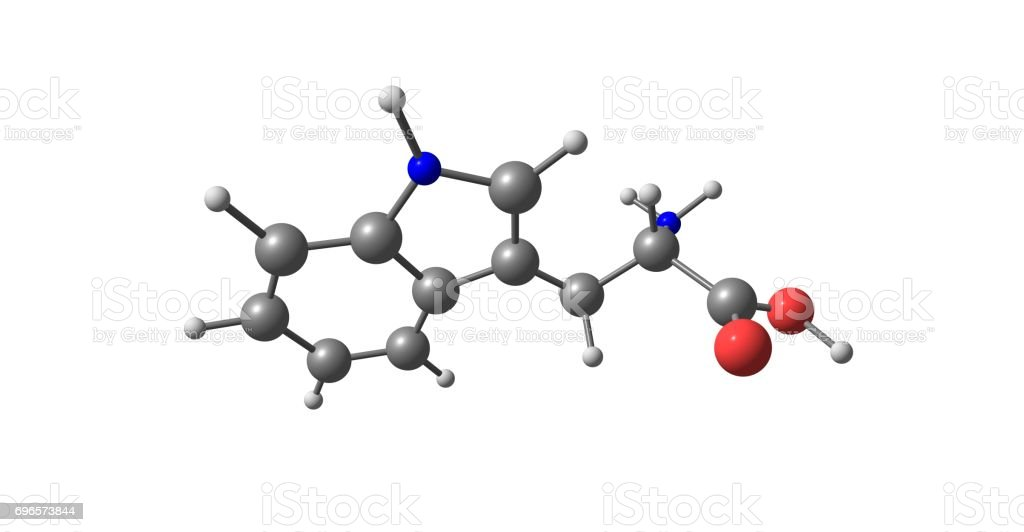 Tryptophan molecular structure isolated on white stock photo