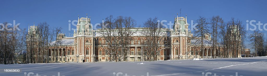 Tsaritsyno Grand Palace in winter, Moscow, Russia royalty-free stock photo