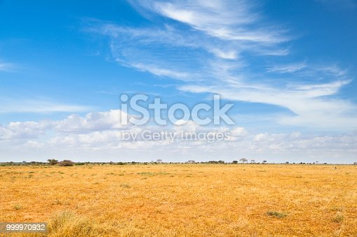 Dry savanna landscape in Tsavo East National Park in Kenya.