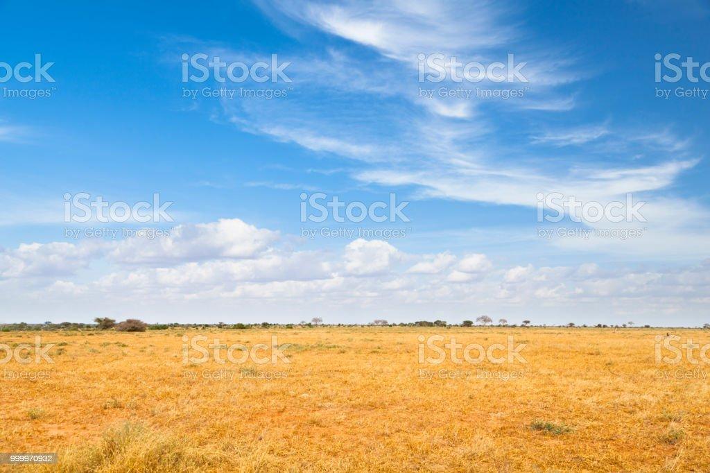 Tsavo Ost-Landschaft in Kenia – Foto