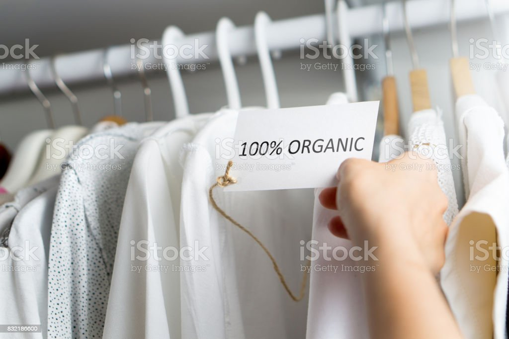 T-shirt made of 100% and hundred percent organic materials. Customer with responsible and nature and eco friendly values looking for clothes in store or shop. Holding label and price tag with text. stock photo
