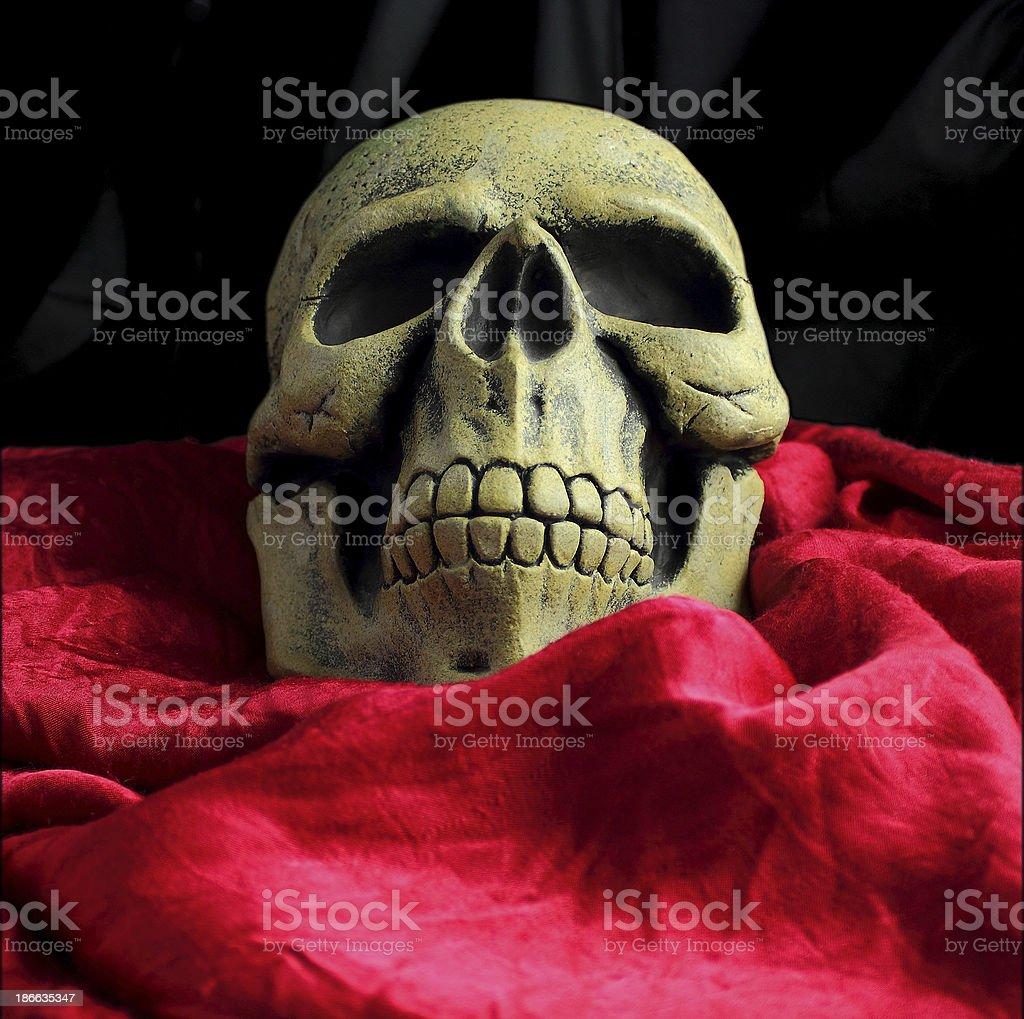 Tête de mort drapée halloween royalty-free stock photo
