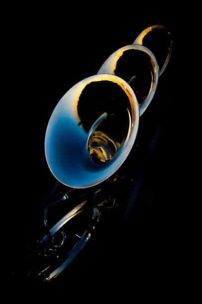 Tuba Sousaphone Section stock photo