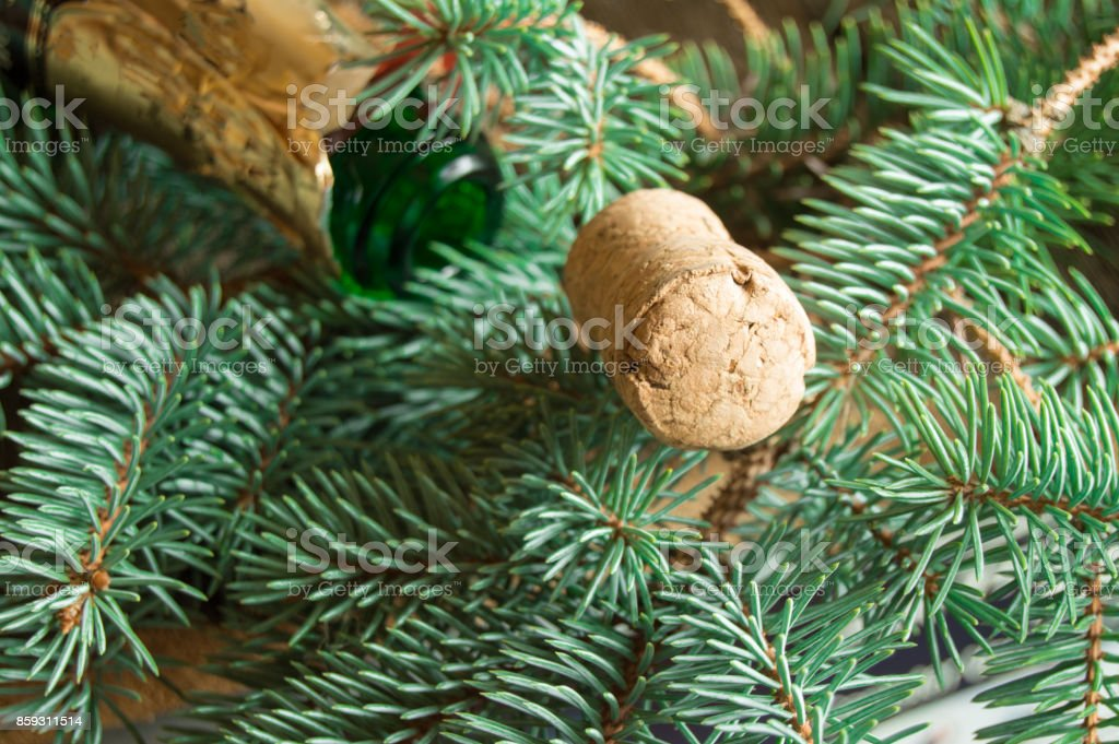 Tube and an empty bottle of champagne lying on spruce branches, focus on the tube, Christmas background stock photo