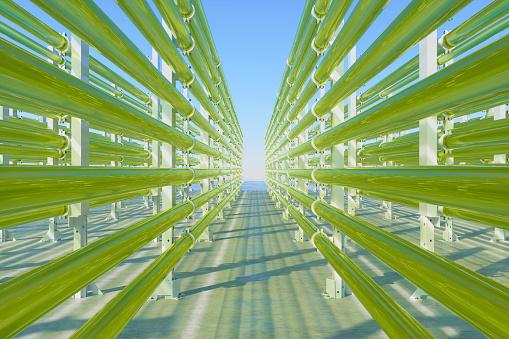 Tubular Algae Bioreactors Fixing CO2 To Produce Biofuel As An Alternative Fuel With Blue Sky Background