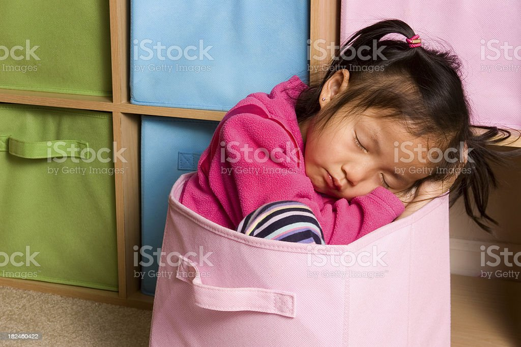 Tuckered out in storage cube royalty-free stock photo