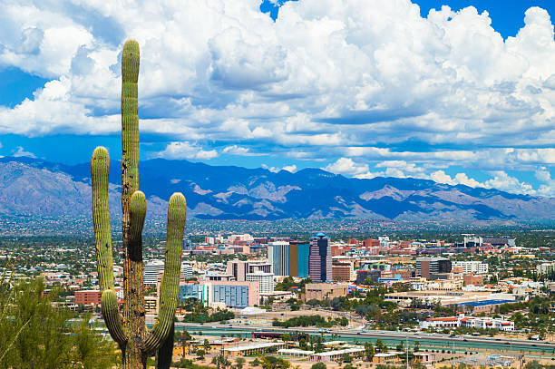 Tucson Aerial Skyline View with Dramatic Clouds and a Cactus Aerial view of Downtown Tucson and the Tucson area with a Saguaro Cactus in the foreground and dramatic clouds and the Santa Catalina Mountains in the background, during summertime (including during the summer monsoon.) tucson stock pictures, royalty-free photos & images