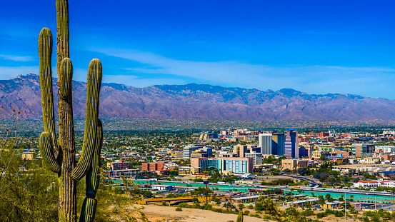 Tucson Arizona skyline cityscape framed by saguaro cactus and mountains