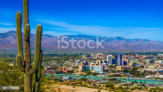 Tucson Arizona skyline cityscape framed by saguaro cactus and mountains