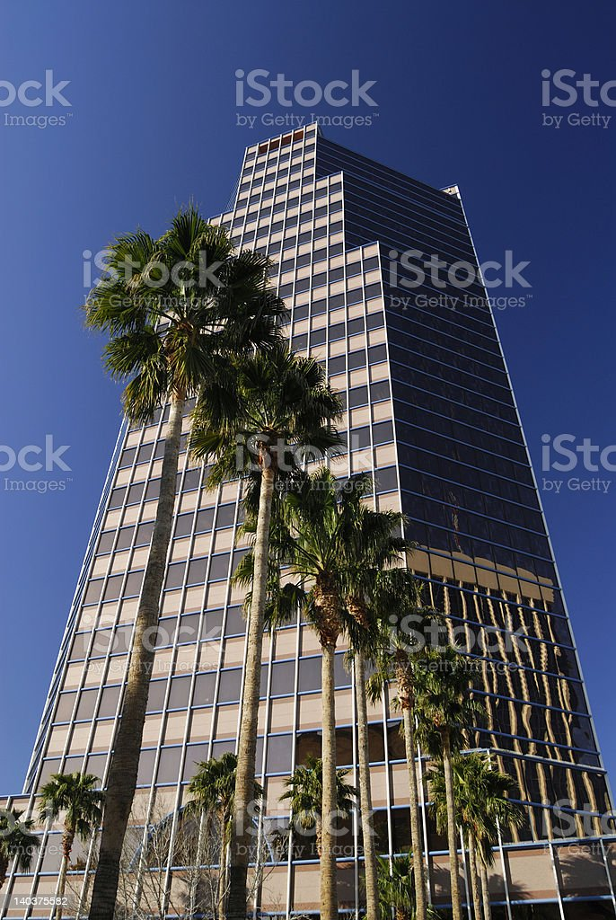 Tucson Downtown Building and Palm trees royalty-free stock photo