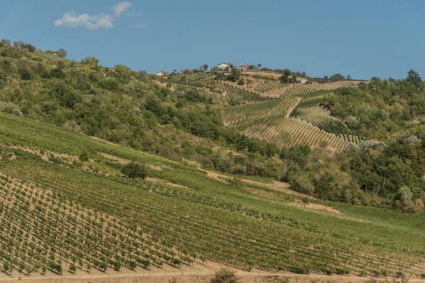 Tufo (Avellino),Italy,  simboli, luoghi e vigne Tufo (Avellino), Italy, symbols, places and vineyards tuff stock pictures, royalty-free photos & images