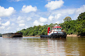 on kapuas, barito  and mahakam river in Kalimantan Indonesia everyday we will see coal shipment by barge