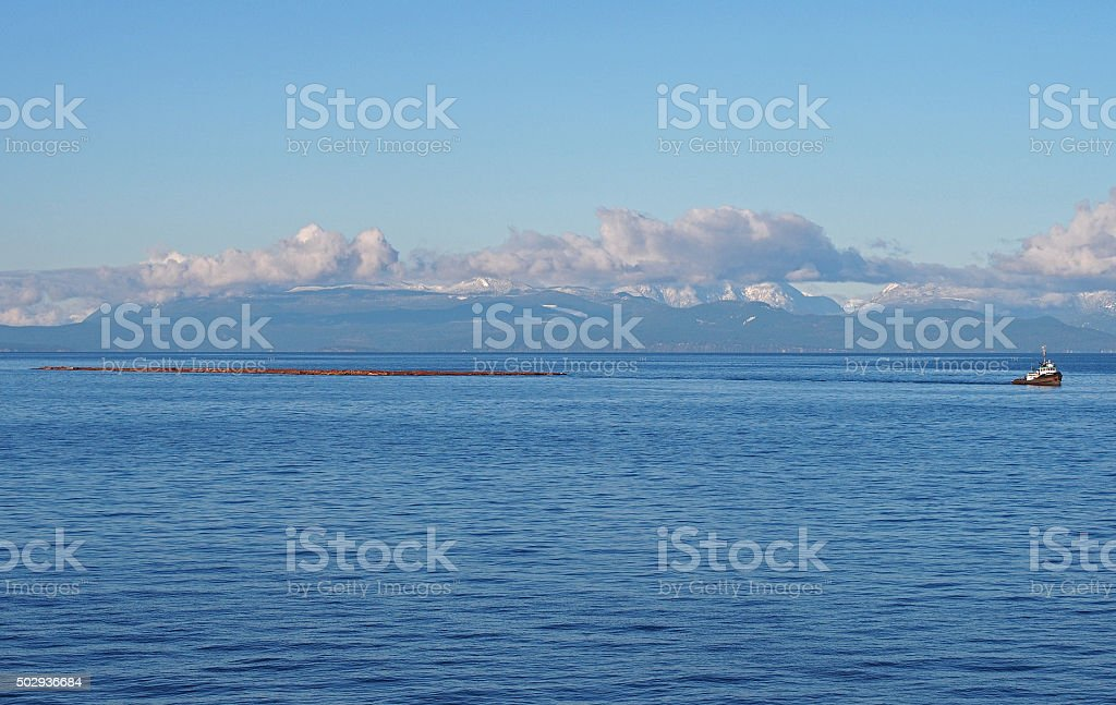 Tugboat Towing Logs Near Nanaimo, Vancouver Island, British Columbia, Canada stock photo
