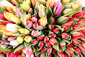 Tulip bouquet from above