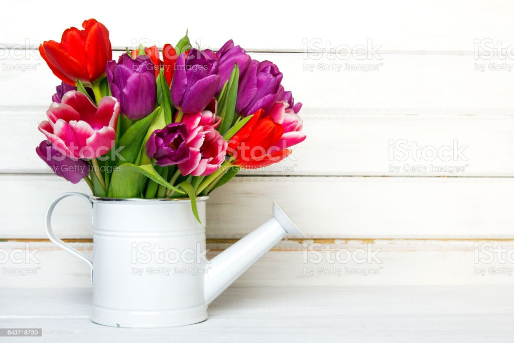 Tulip bouquet on wooden background, copy space stock photo