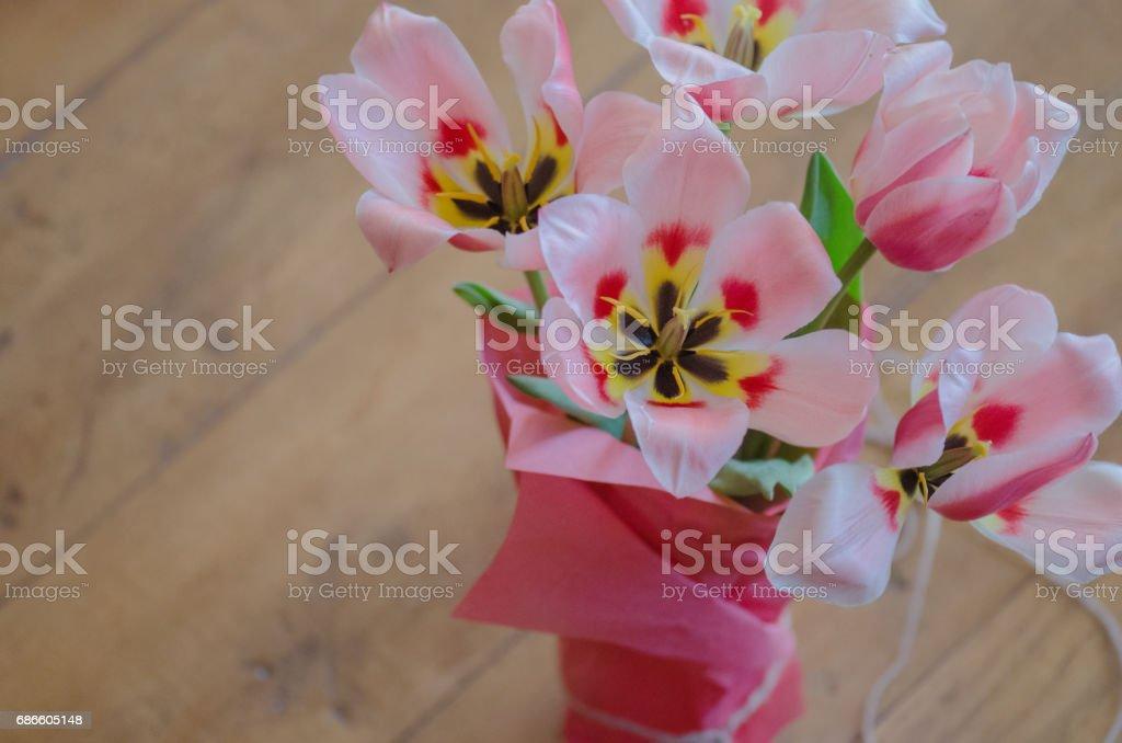 Tulpe Blume Bouquet und grüne Blätter Hintergrund Lizenzfreies stock-foto