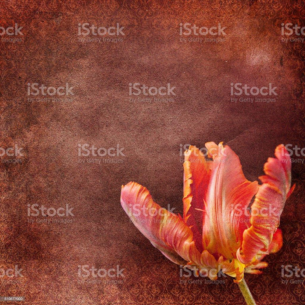 暖かい壁紙のイラスト素材 ベクタ Image 4825481