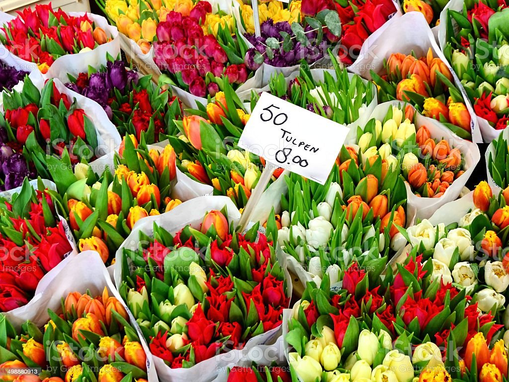 Tulip flowers for sale at a Dutch flower market stock photo