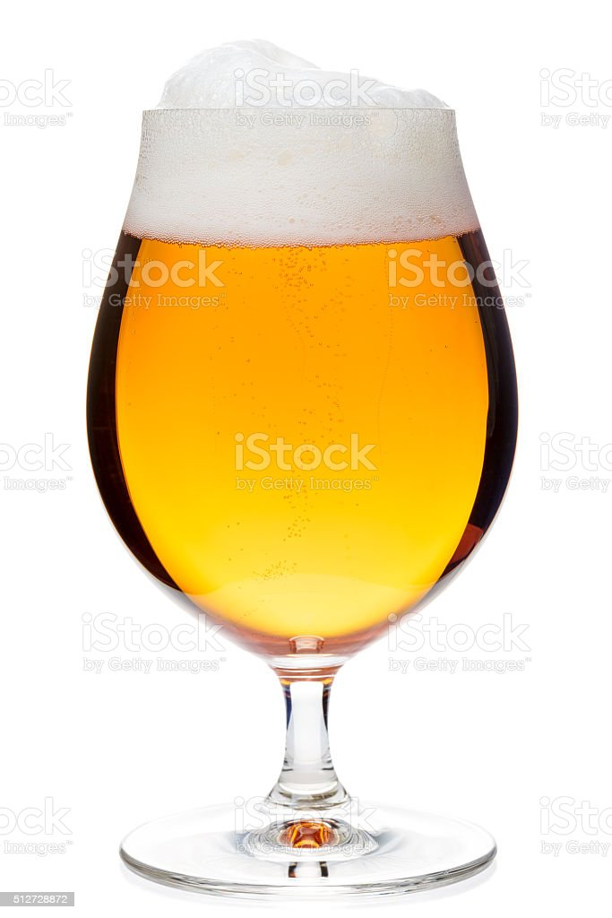 Tulip glass of pilsener beer isolated stock photo