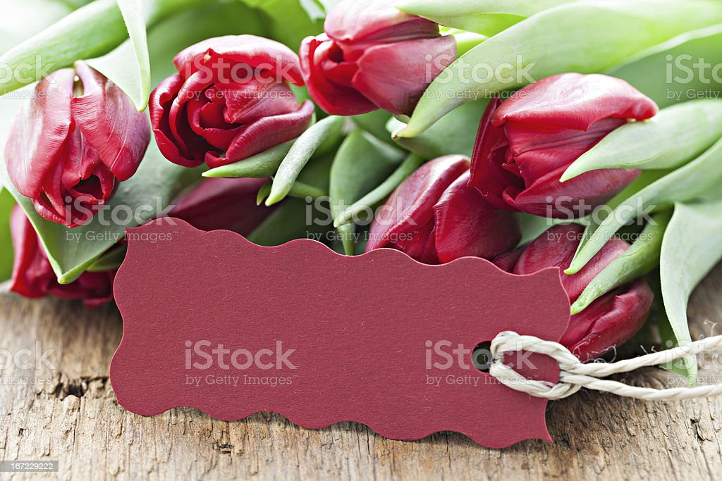 tulips and tag royalty-free stock photo