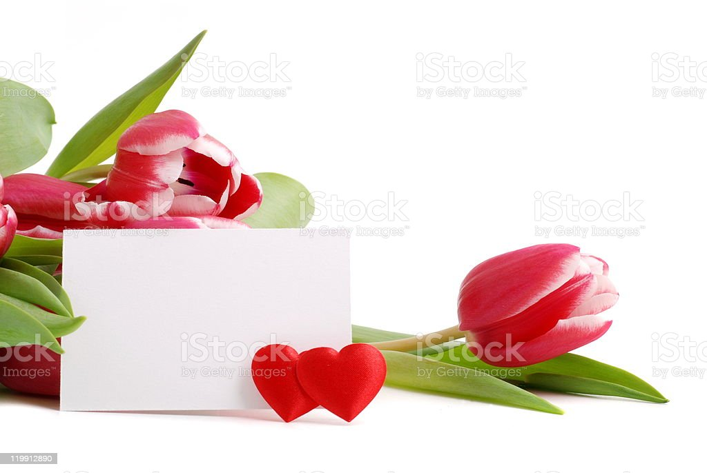 Tulips and two hearts royalty-free stock photo