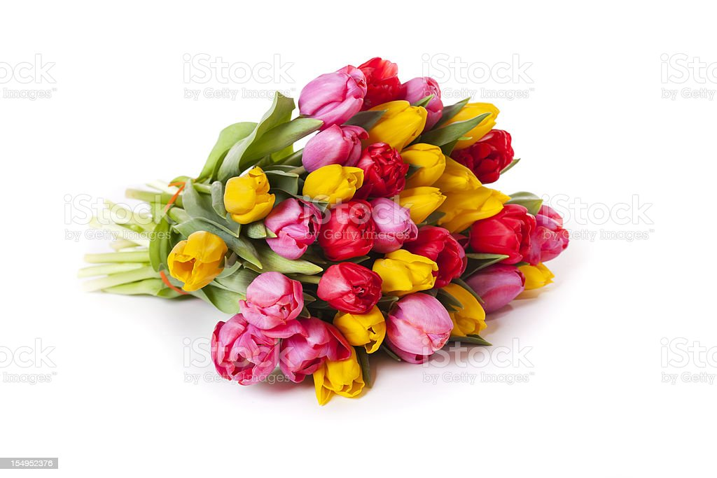 Tulips Bouquet isolated on white stock photo