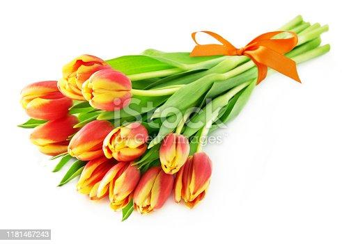 Tulips bouquet orange on white background