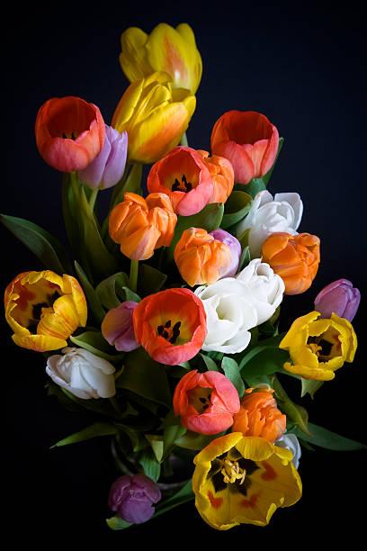 Tulips bouquet picture id146955255?b=1&k=6&m=146955255&s=612x612&w=0&h=xbd6h1uaavyfo9wifvqm7 d5kgzbvia mdxvzw7o2tg=