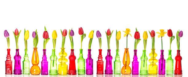 tulpen narzissen blumen glas flaschen frühlingsdekoration - vase glas stock-fotos und bilder