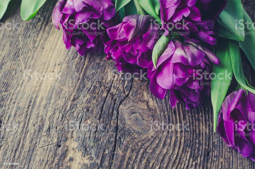 Tulips flowers background stock photo