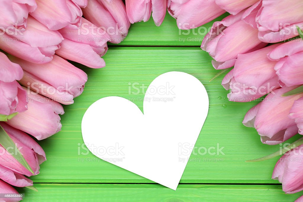 Tulips flowers with heart love on mother's or Valentine's day royalty-free stock photo