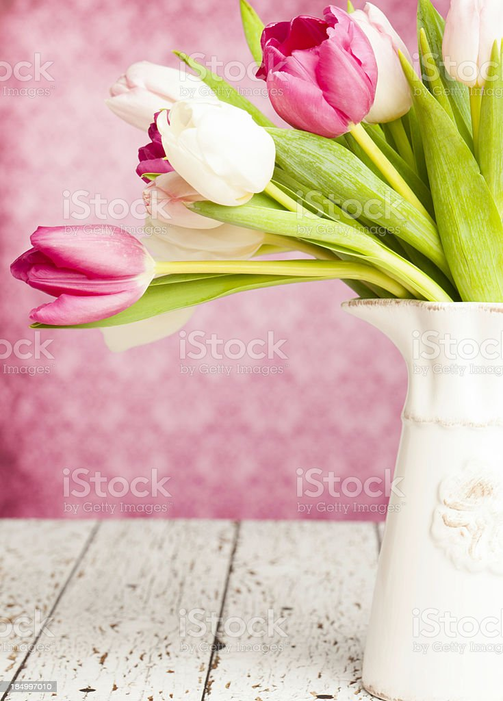 Tulips for Mother's Day royalty-free stock photo