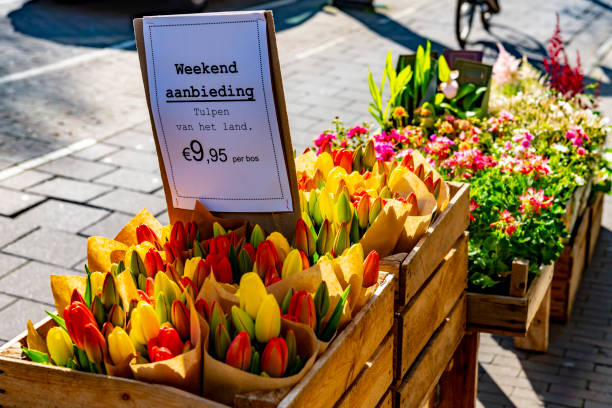 Tulips for sale outside a flower shop stock photo