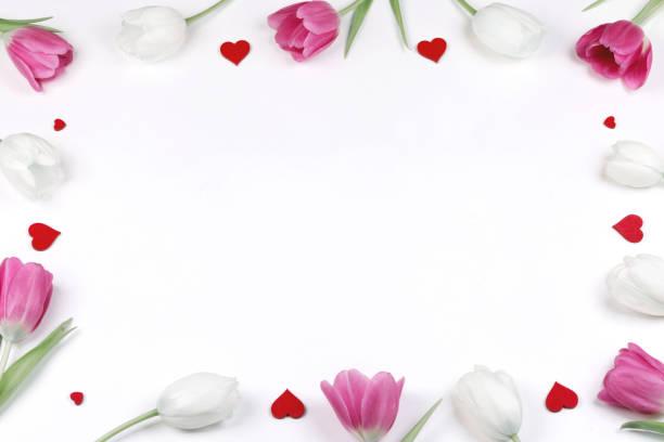 Tulips hearts frame stock photo