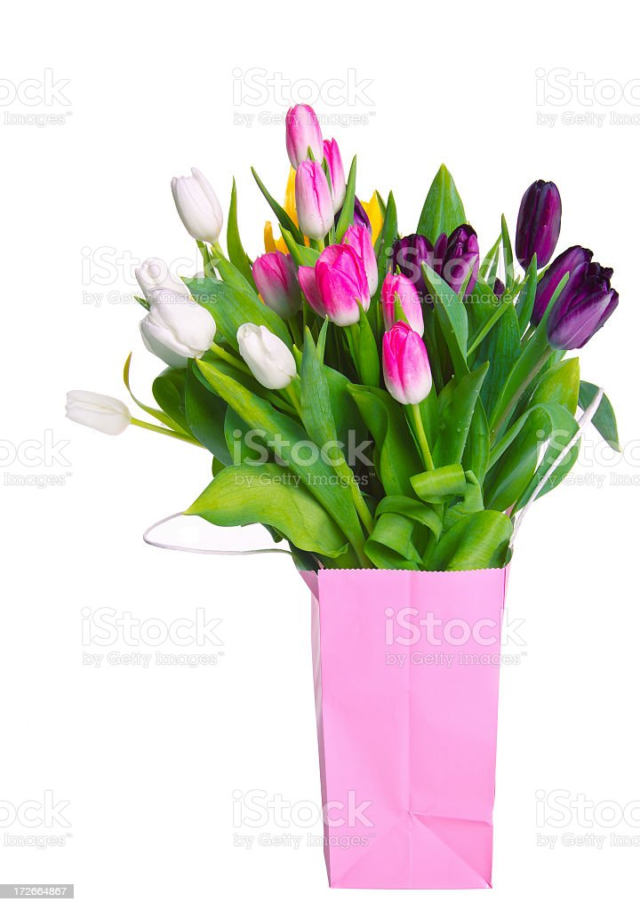 Tulips in a shopping bag royalty-free stock photo