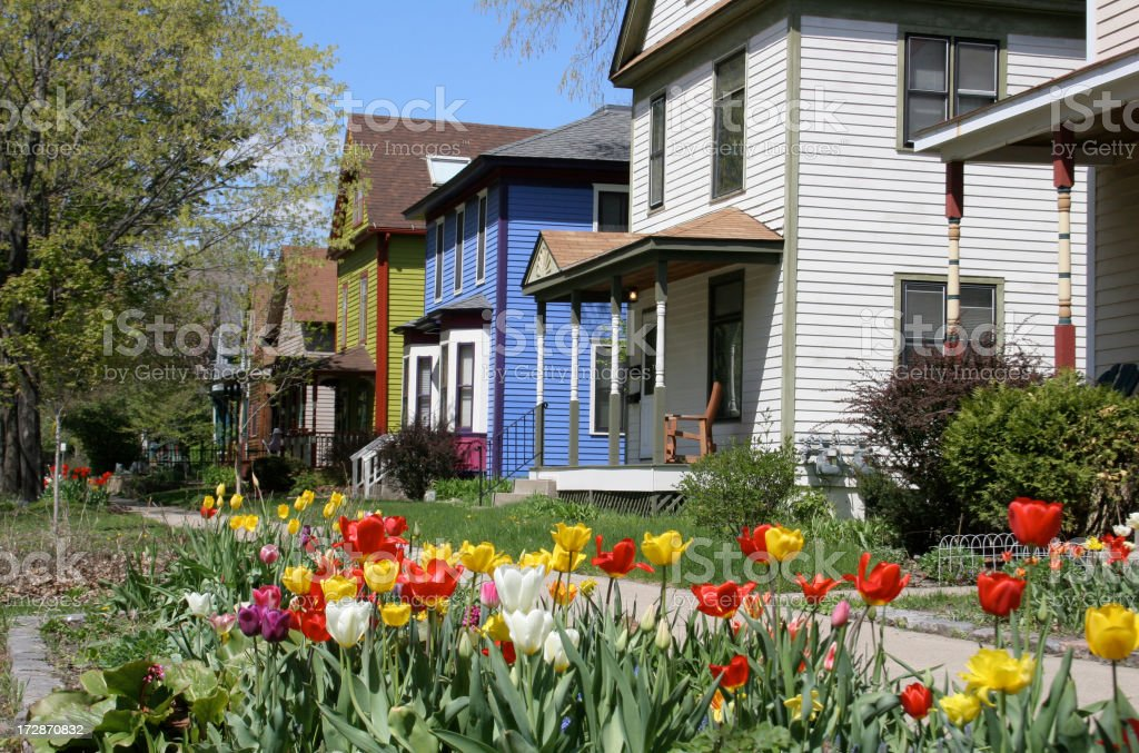 Tulips in front of houses on Milwaukee Avenue Spring Tulips decorate Milwaukee AvenuePlease CLICK on Lightbox Button Below to see more  images of HOMES OLD AND NEW Architecture Stock Photo