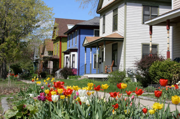 Tulips in front of houses on Milwaukee Avenue stock photo