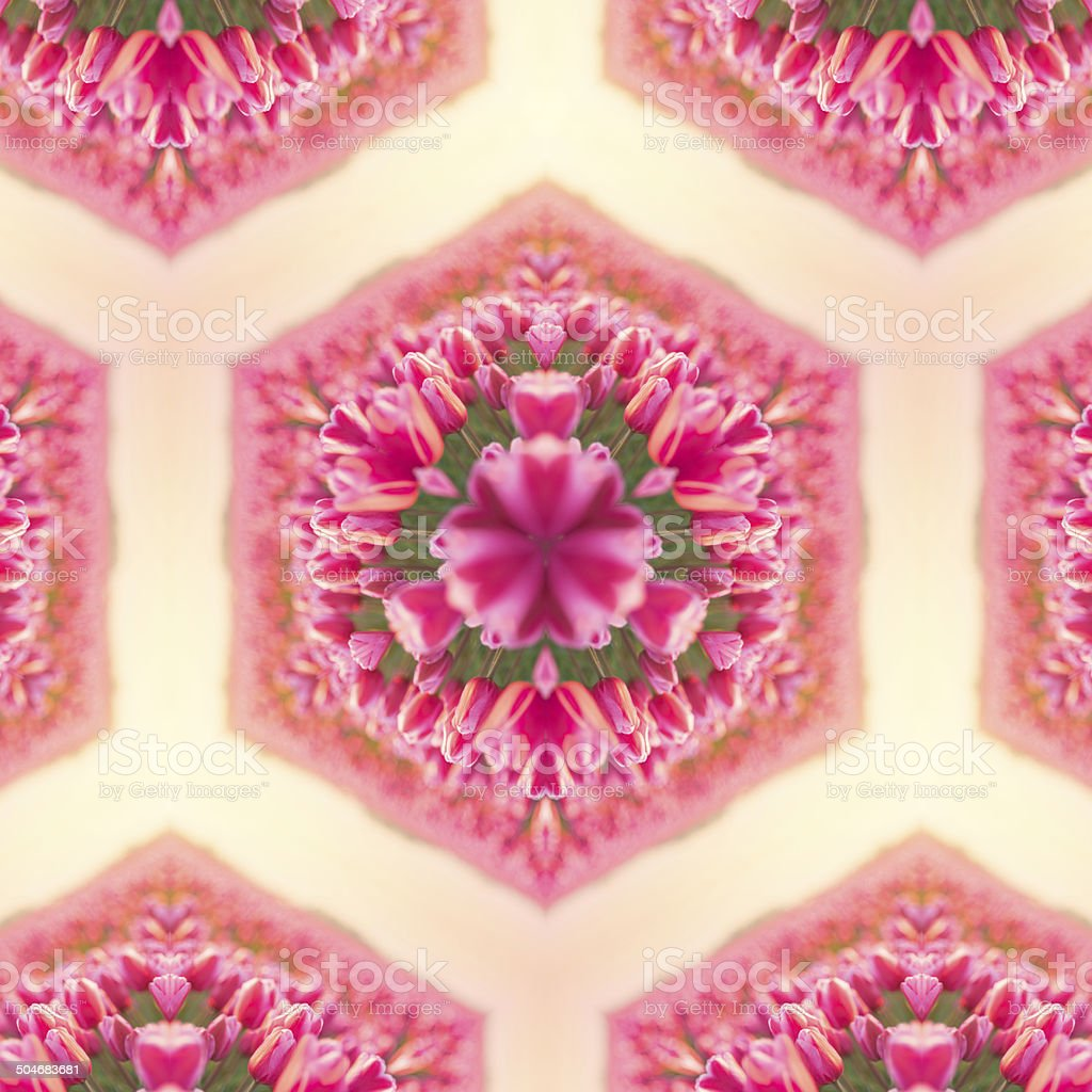 Tulips in kaleidoscope royalty-free stock photo