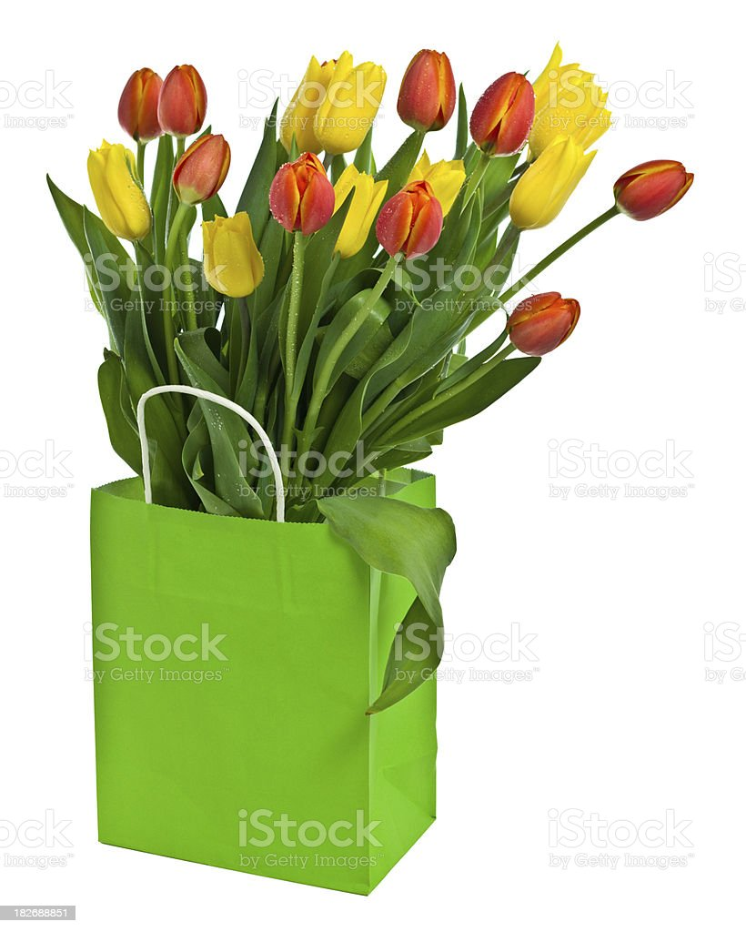 Tulips in shopping bag stock photo