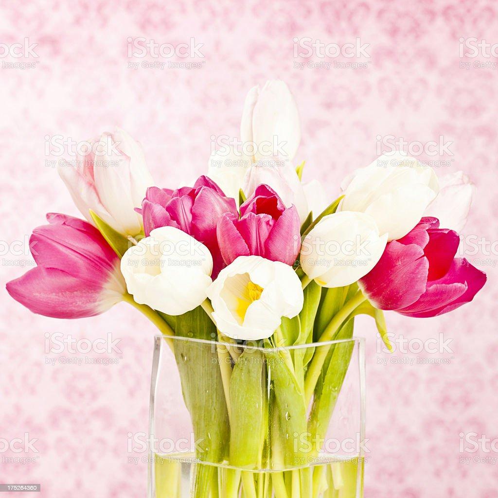 Tulips in Vase royalty-free stock photo