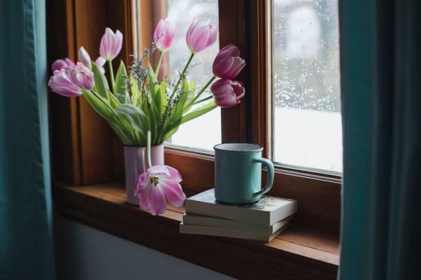 Tulips  on a window sill stock photo