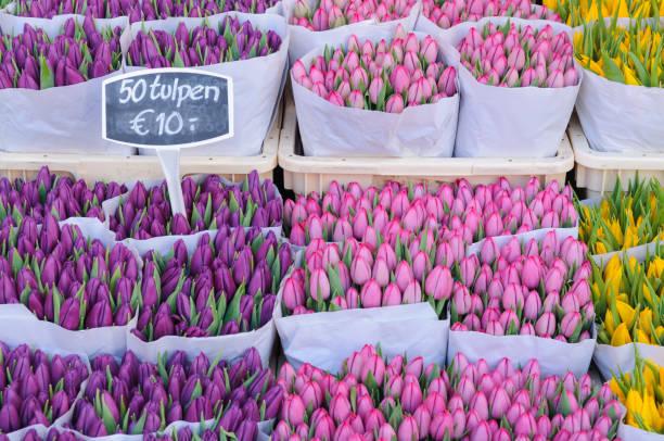 Tulpen zum Verkauf auf dem Bloemenmakrt Blumenmarkt in Amsterdam – Foto