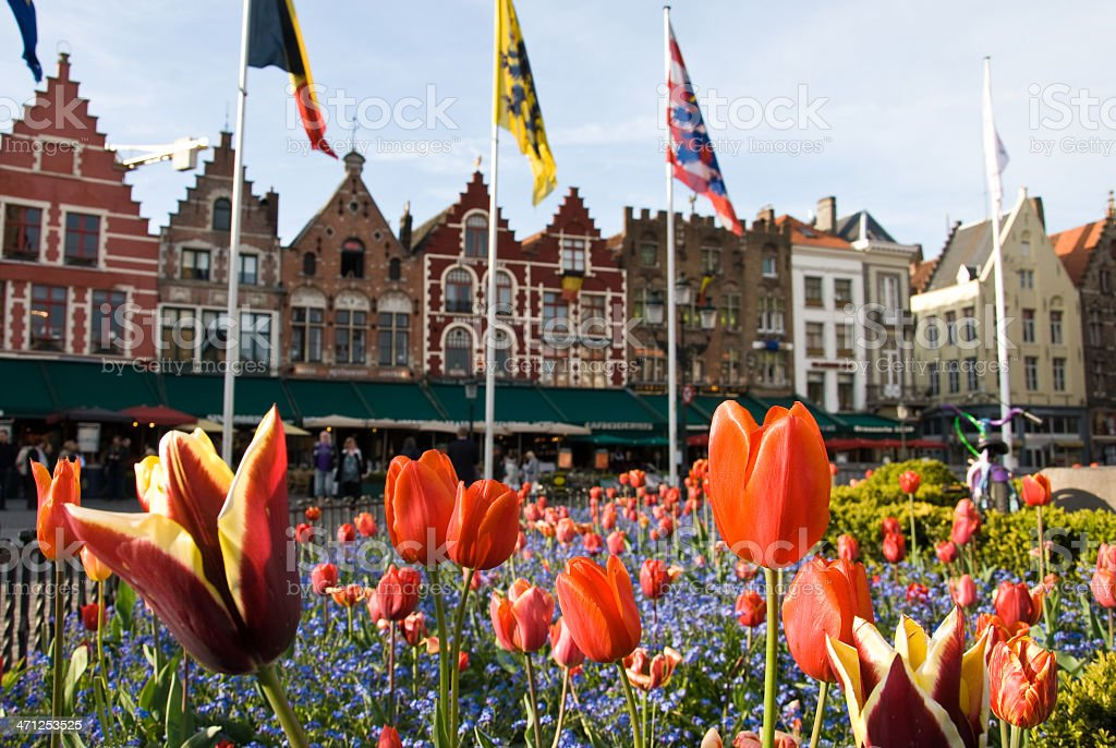 Tulips on the Markt in Bruges, Belgium royalty-free stock photo