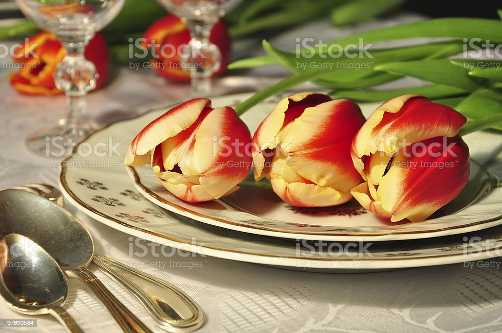 Tulips on the plate royalty-free stock photo