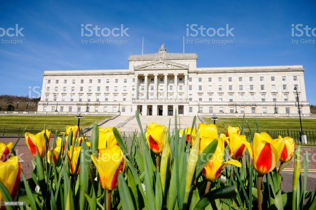 Tulpen außerhalb Parlamentsgebäude Stormont, Belfast, Heimat der Northern Ireland Assembly. – Foto