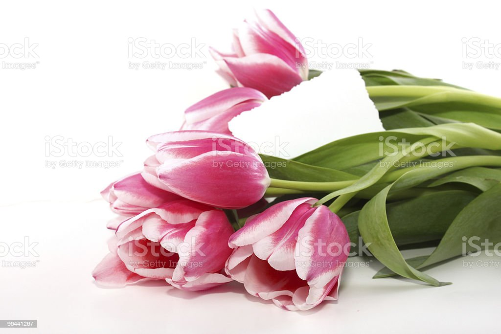 Tulipas com uma nota - Foto de stock de Amor royalty-free