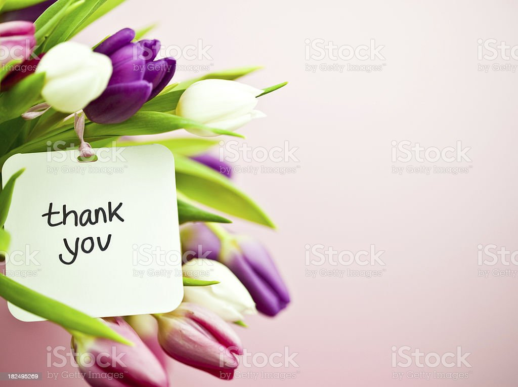 Tulips with Thank You Card stock photo