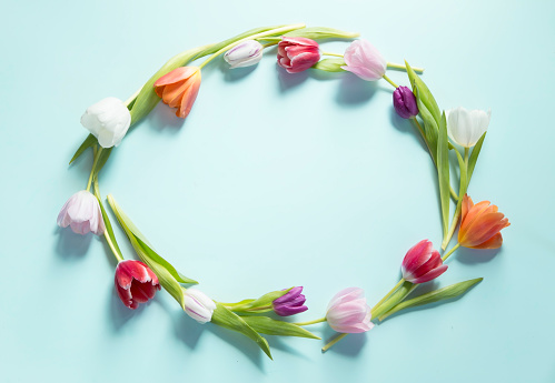 Tulips wreth