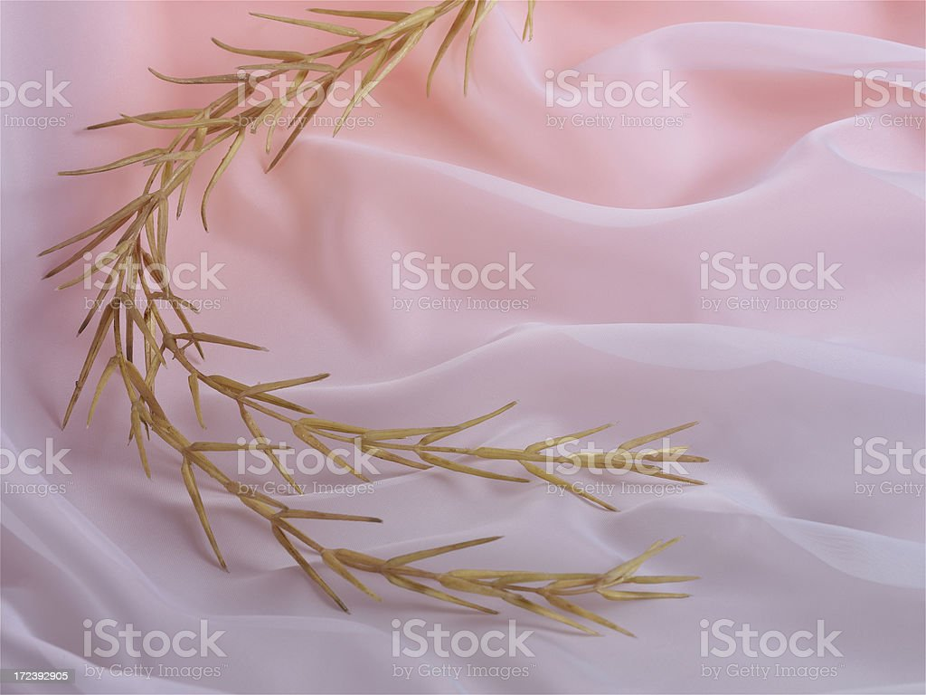 tulle royalty-free stock photo